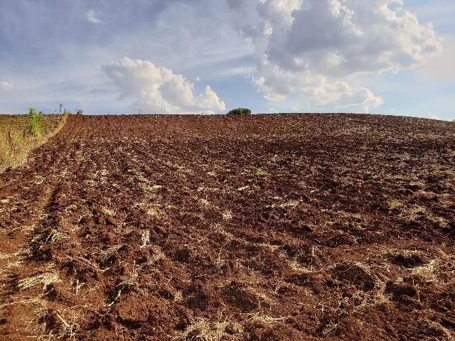 Sítio em Abatiá, Norte Pioneiro do Paraná (54.450 m2) - Foto 2