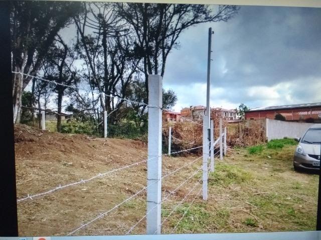 Terreno em S.J.Pinhais - Foto 8