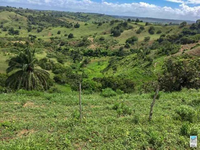 Excelente Fazenda em Amélia Rodrigues - Bahia