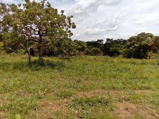 Chácara com corrego e área verde - Chácara a Venda no bairro Residencial Lago De...