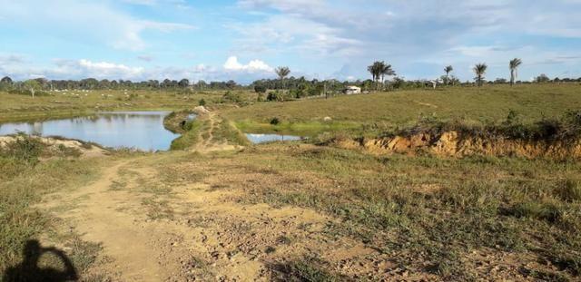 Fazenda em Roraima na BR210 - Caroebe - Foto 7