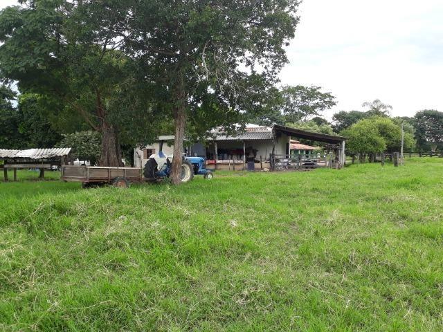 Área para confinamento ou laticínio na comunidade olho dagua na BR 364 a 30 km de Cuiabá - Foto 20