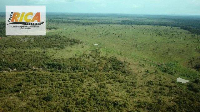 Fazenda com 11.000 Hectares à venda, na Zona Rural - Novo Aripuanã/AM - Foto 10