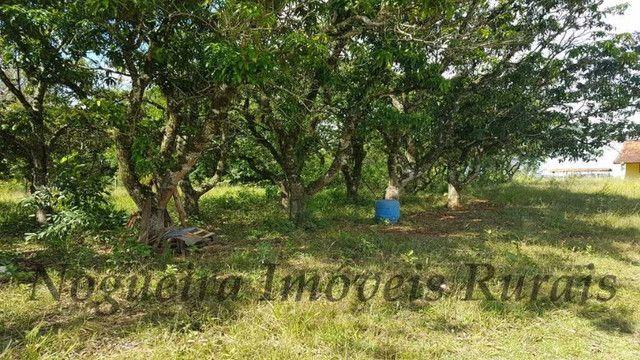 Sítio com granja, capacidade para 30.000 frangos (Nogueira Imóveis Rurais) - Foto 17