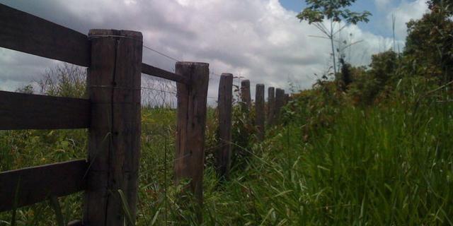 Zé Doca - Maranhão: Vendo Propriedade Rural - Foto 17
