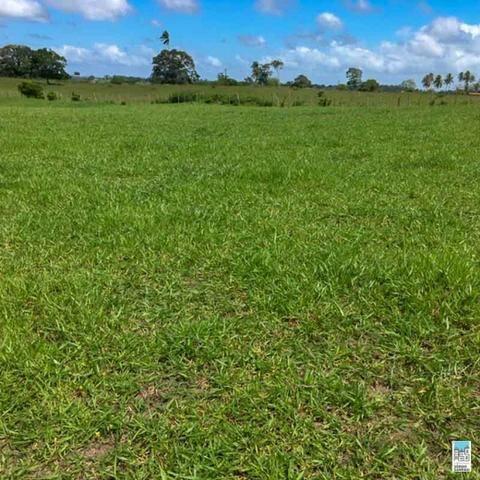 Excelente Fazenda em Amélia Rodrigues - Bahia - Foto 2