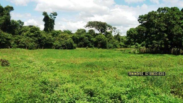 Fazenda de 13 alq. em Trindade - Foto 20