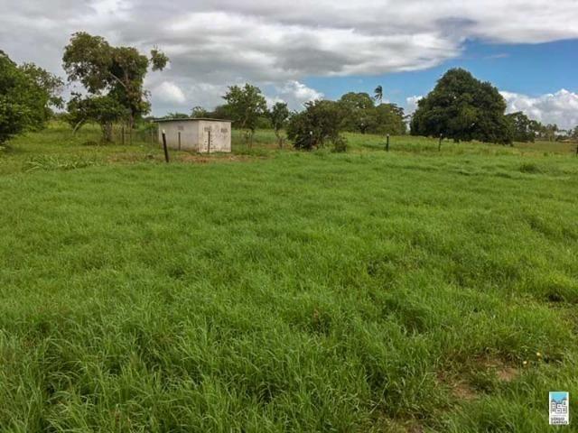 Excelente Fazenda em Amélia Rodrigues - Bahia - Foto 8
