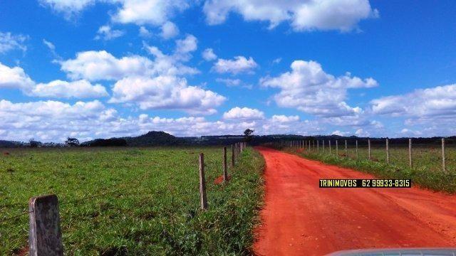 Fazenda de 13 alq. em Trindade - Foto 9