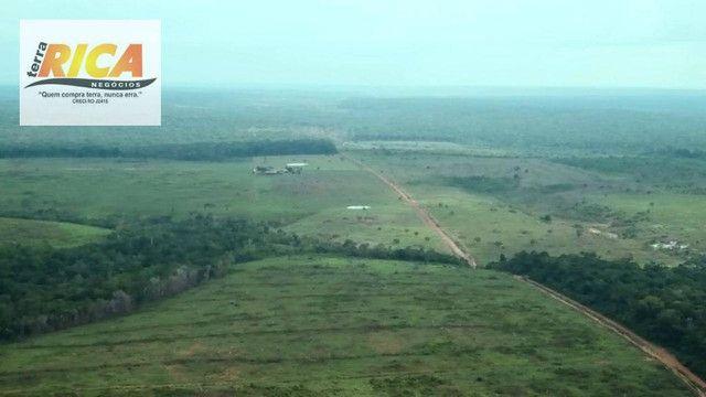 Fazenda com 11.000 Hectares à venda, na Zona Rural - Novo Aripuanã/AM - Foto 9