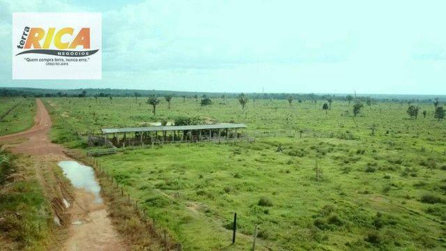 Fazenda com 11.000 Hectares à venda, na Zona Rural - Novo Aripuanã/AM - Foto 4