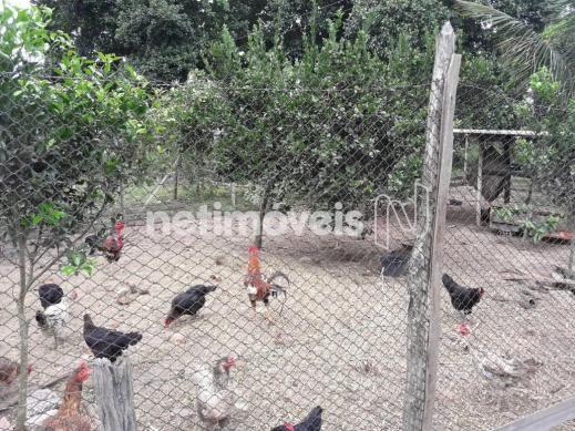 Terreno à venda em Fazenda, São gonçalo dos campos cod:720362 - Foto 13