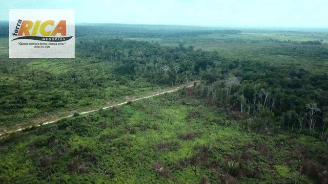 Fazenda com 11.000 Hectares à venda, na Zona Rural - Novo Aripuanã/AM - Foto 19