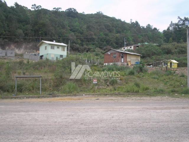 Terreno à venda em Santa catarina, Caxias do sul cod:352883 - Foto 3