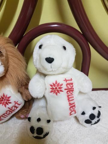Ursos Parmalat - Foto 3