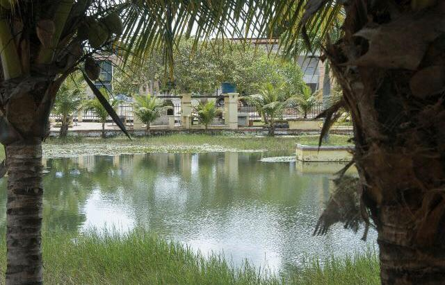 Terreno 476m2 Condominio Imperial Macaiba - Foto 2