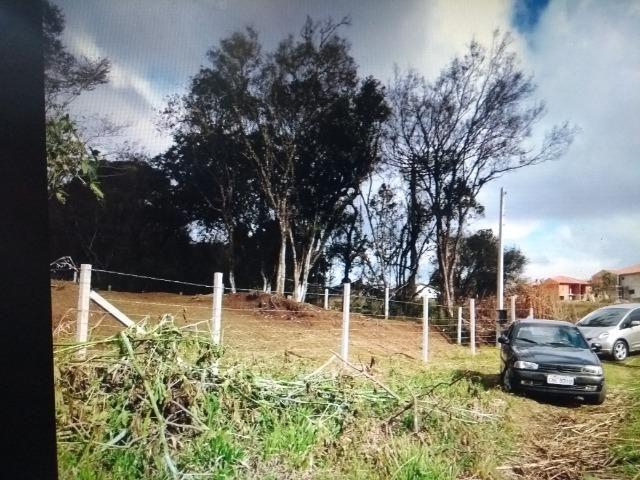 Terreno em S.J.Pinhais - Foto 2