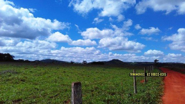 Fazenda de 13 alq. em Trindade - Foto 7
