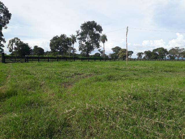 Área para confinamento ou laticínio na comunidade olho dagua na BR 364 a 30 km de Cuiabá - Foto 17