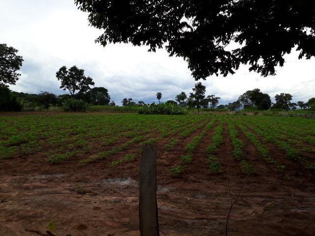 Área para confinamento ou laticínio na comunidade olho dagua na BR 364 a 30 km de Cuiabá - Foto 8