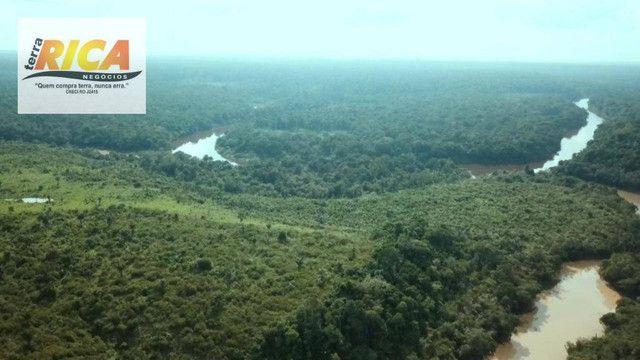 Fazenda com 11.000 Hectares à venda, na Zona Rural - Novo Aripuanã/AM - Foto 6