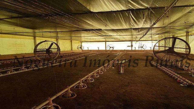 Sítio com granja, capacidade para 30.000 frangos (Nogueira Imóveis Rurais) - Foto 12