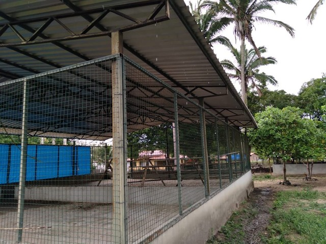 Cobertura de telhas galvanizadas l - Foto 2