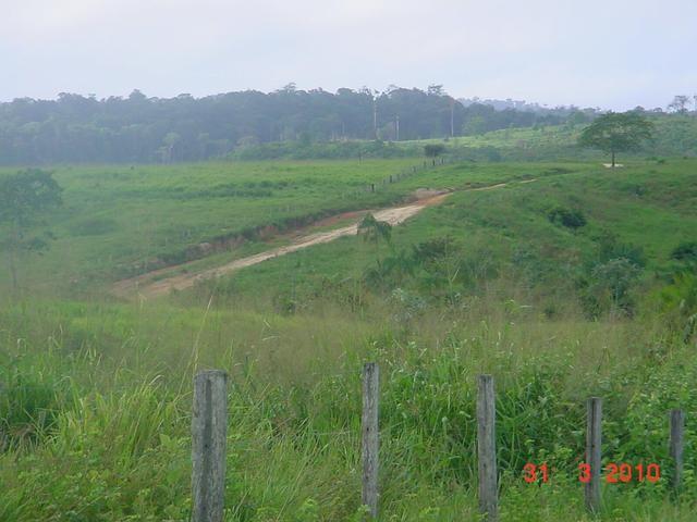 Zé Doca - Maranhão: Vendo Propriedade Rural