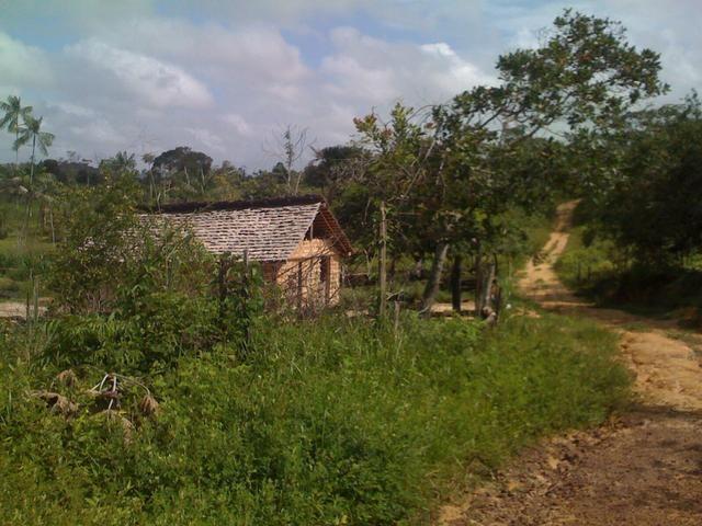 Zé Doca - Maranhão: Vendo Propriedade Rural - Foto 2