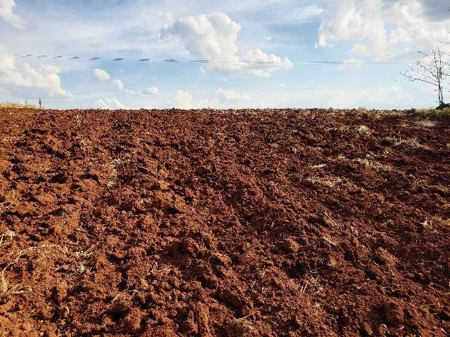Sítio em Abatiá, Norte Pioneiro do Paraná (54.450 m2) - Foto 5