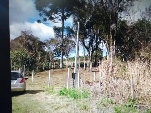 Terreno em S.J.Pinhais - Foto 7