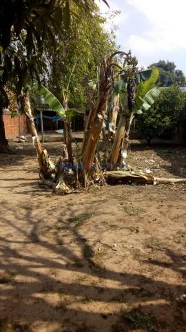 Casa à venda com 3 dormitórios em Chácaras assay, Hortolândia cod:CA271712 - Foto 10
