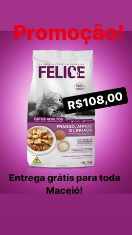 Felice gatos 10kg , Mania Pet Delivery - Foto 5