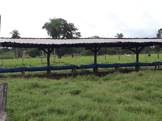 Área para confinamento ou laticínio na comunidade olho dagua na BR 364 a 30 km de Cuiabá - Foto 3