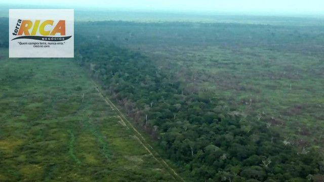 Fazenda com 11.000 Hectares à venda, na Zona Rural - Novo Aripuanã/AM - Foto 12