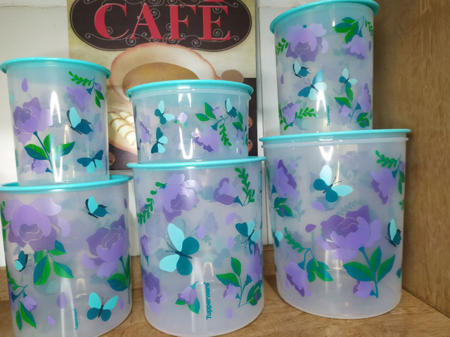 Kit Instantâneas borboletas Tupperware - Foto 2