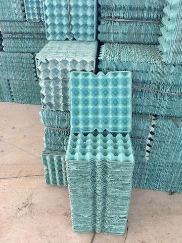 Bandeja papelão 100 unidades ovos galinha
