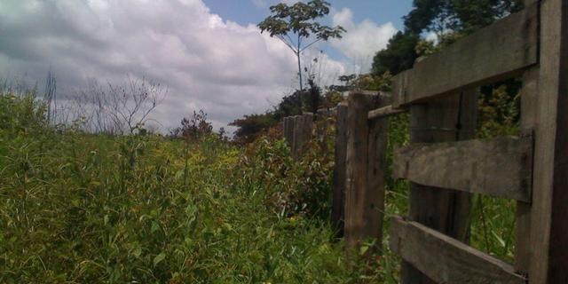 Zé Doca - Maranhão: Vendo Propriedade Rural - Foto 11