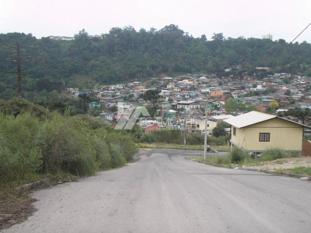 Terreno à venda em Santa catarina, Caxias do sul cod:352883 - Foto 2