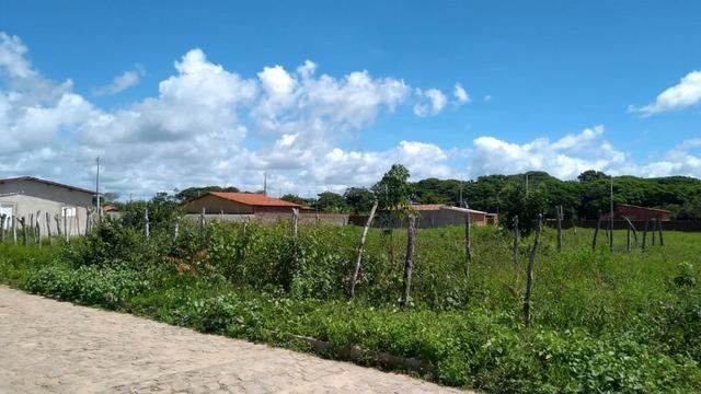 Terreno/Lote à venda em Nizia Floresta - Foto 2