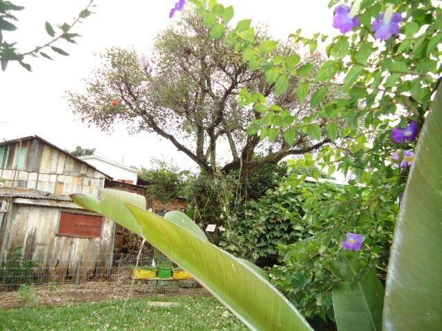 (CA2160) Casa no Bairro Oliveira, Santo Ângelo, RS - Foto 3