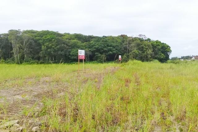 Área para investir na BR-280/Araquari (ref. 02)[VR006]