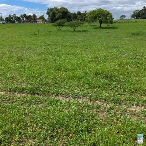 Excelente Fazenda em Amélia Rodrigues - Bahia - Foto 3