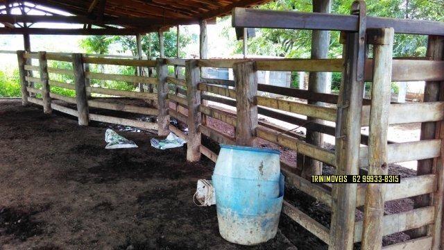 Fazenda de 13 alq. em Trindade - Foto 13