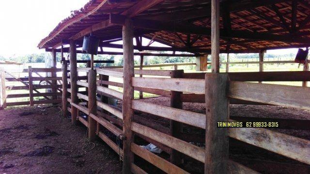 Fazenda de 13 alq. em Trindade - Foto 5