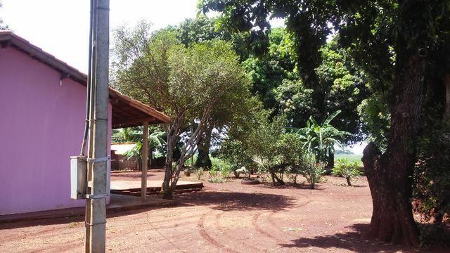 Chácara Dourados, MS - beira BR 163 - Foto 17