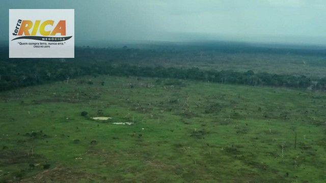 Fazenda com 11.000 Hectares à venda, na Zona Rural - Novo Aripuanã/AM - Foto 7
