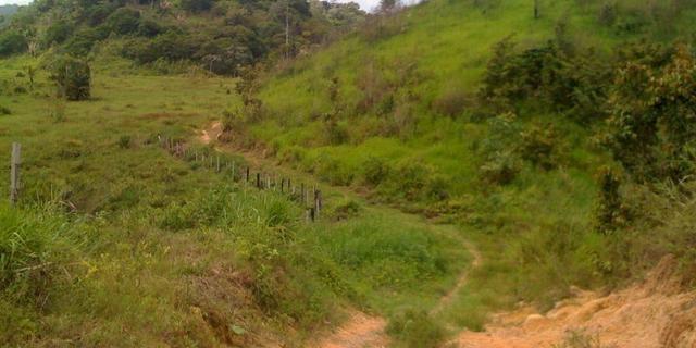 Zé Doca - Maranhão: Vendo Propriedade Rural - Foto 20
