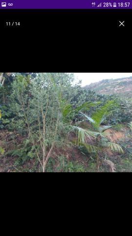 Terreno em Santa Rita de Minas