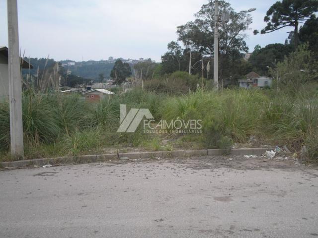 Terreno à venda em Santa catarina, Caxias do sul cod:352883
